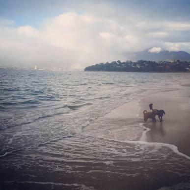 bellerive-beach